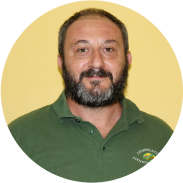 Paolo Romanò